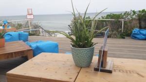 Deck Beach Lounge (9)