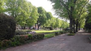 Rosengarten (3)