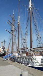 Stadthafen Rostock (15)